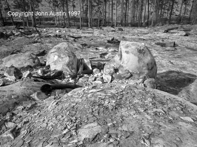 Burn Damaged Granite Outcrop, Sutton State Forest after clearfelling and burning, 1997 - © John Austin